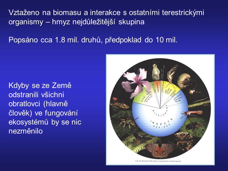 Vztaženo na biomasu a interakce s ostatními terestrickými