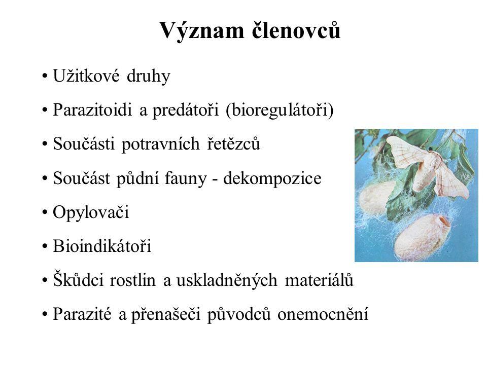 Význam členovců Užitkové druhy Parazitoidi a predátoři (bioregulátoři)