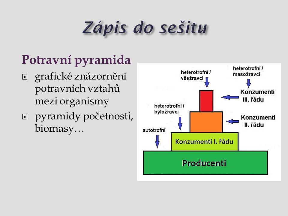 Zápis do sešitu Potravní pyramida