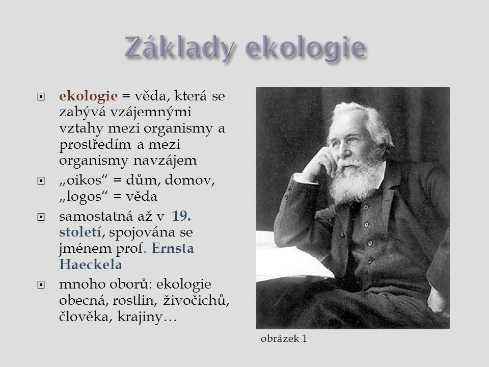 Základy ekologie ekologie = věda, která se zabývá vzájemnými vztahy mezi organismy a prostředím a mezi organismy navzájem.