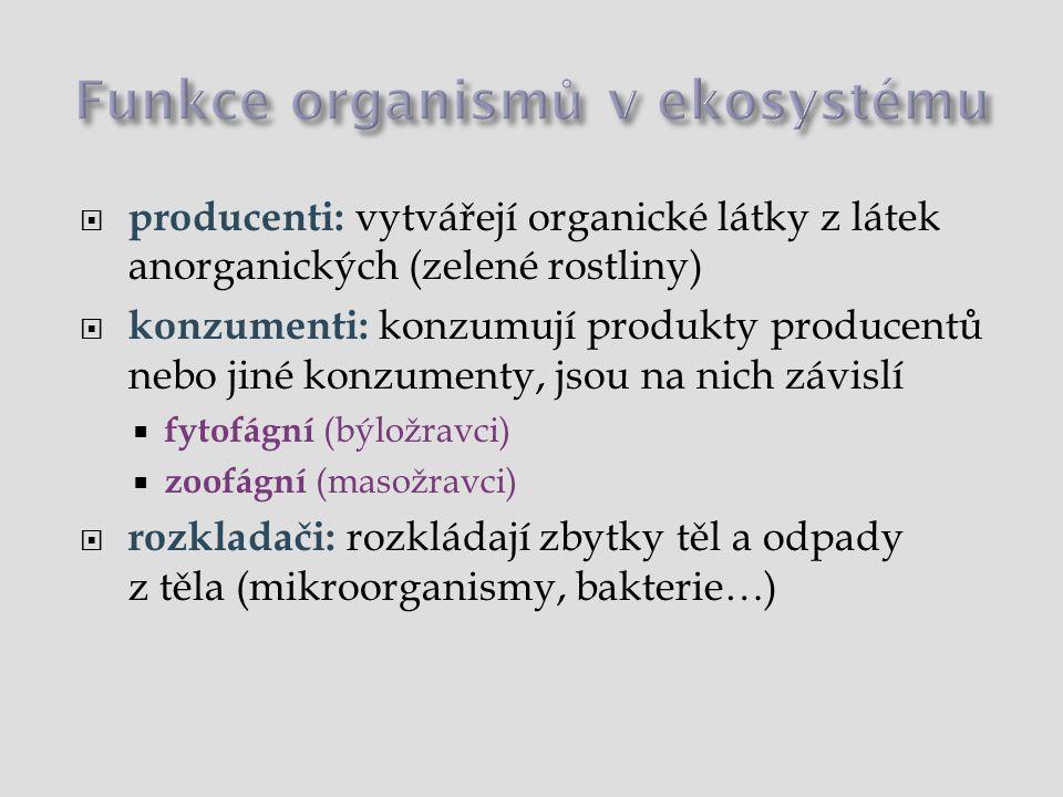 Funkce organismů v ekosystému