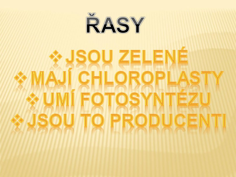ŘASY JSOU Zelené Mají chloroplasty Umí fotosyntézu Jsou to producenti