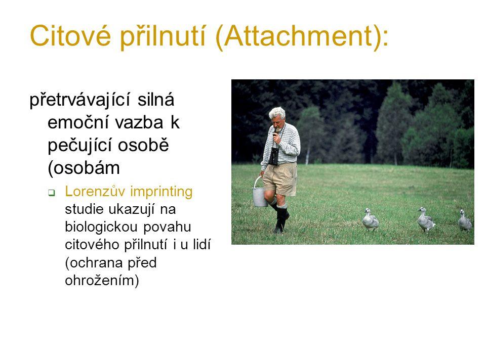 Citové přilnutí (Attachment):