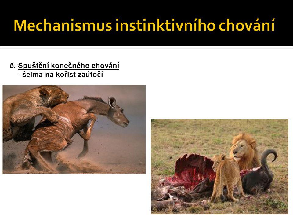 Mechanismus instinktivního chování