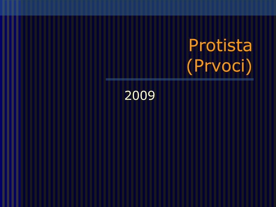 Protista (Prvoci) 2009