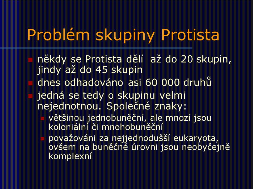Problém skupiny Protista