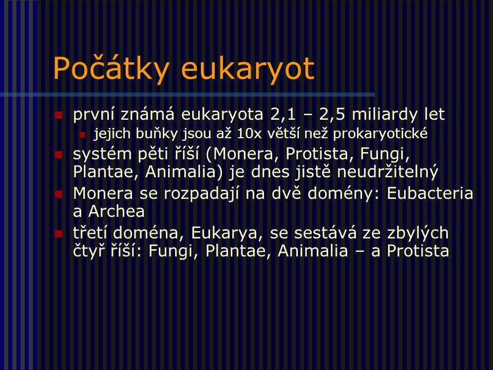 Počátky eukaryot první známá eukaryota 2,1 – 2,5 miliardy let