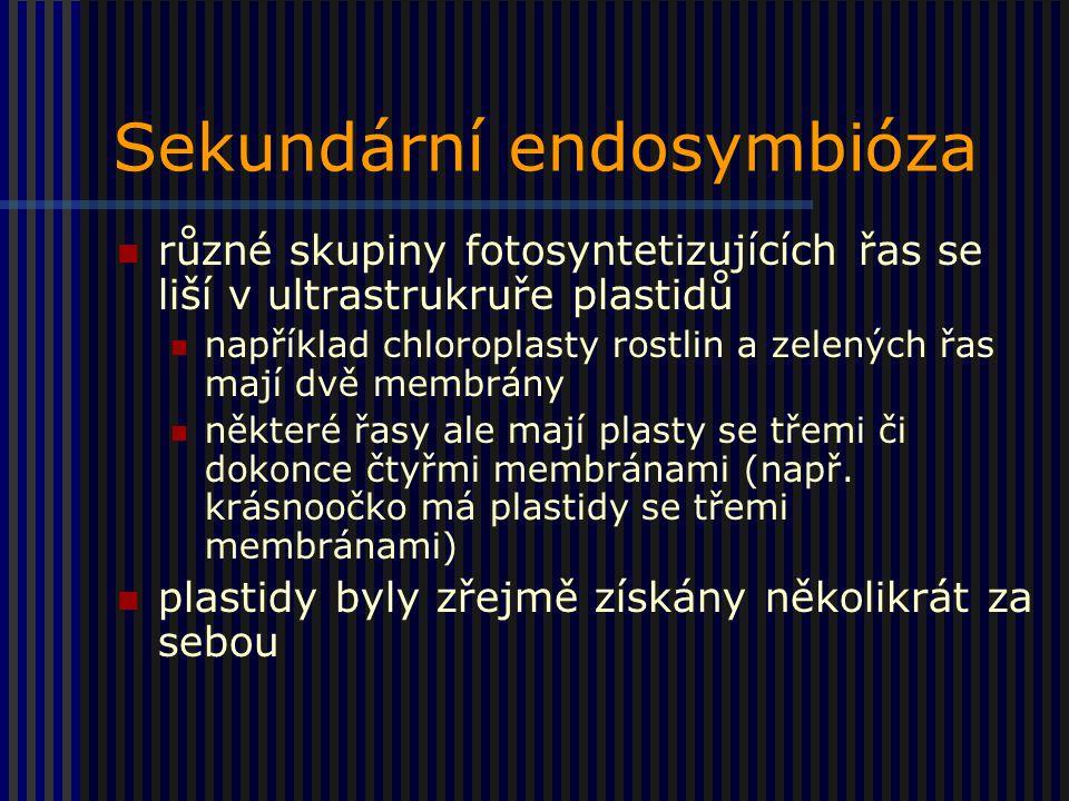 Sekundární endosymbióza