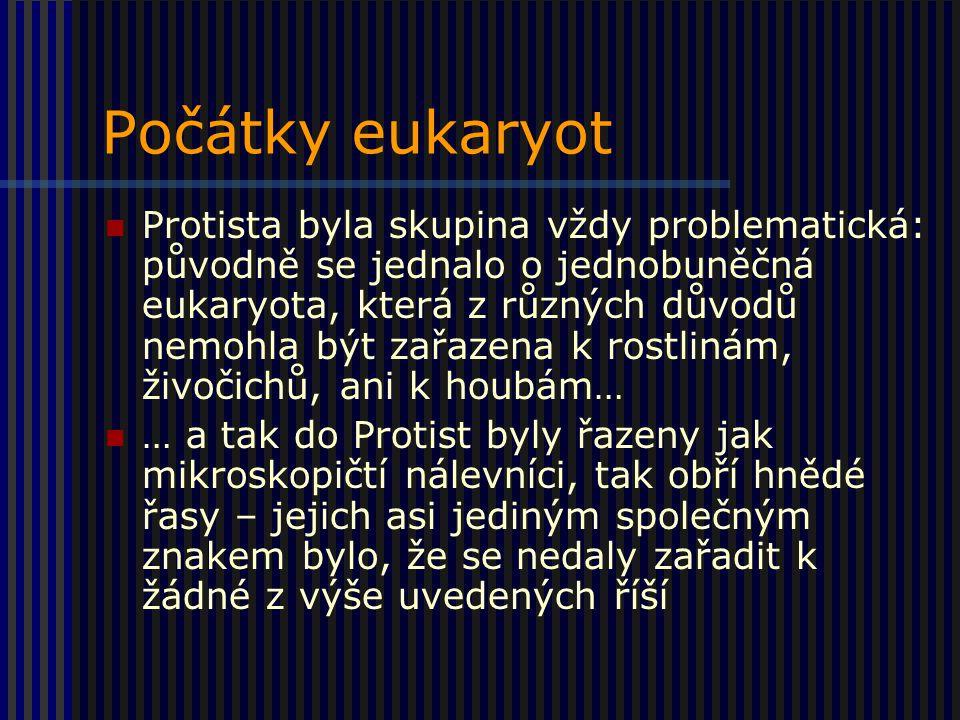 Počátky eukaryot