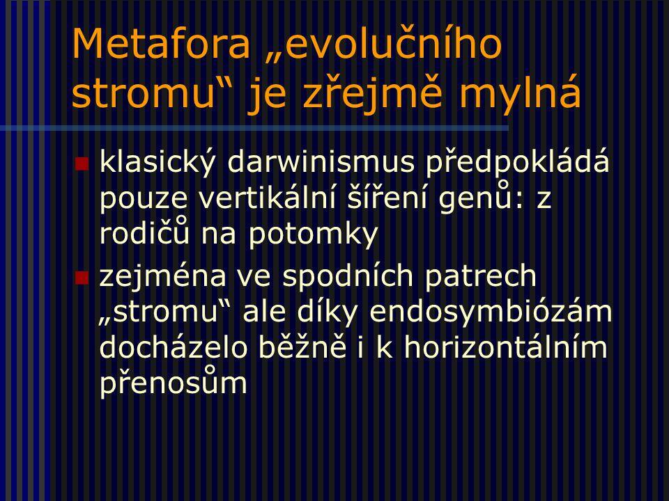 """Metafora """"evolučního stromu je zřejmě mylná"""
