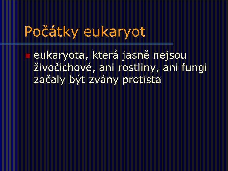 Počátky eukaryot eukaryota, která jasně nejsou živočichové, ani rostliny, ani fungi začaly být zvány protista.