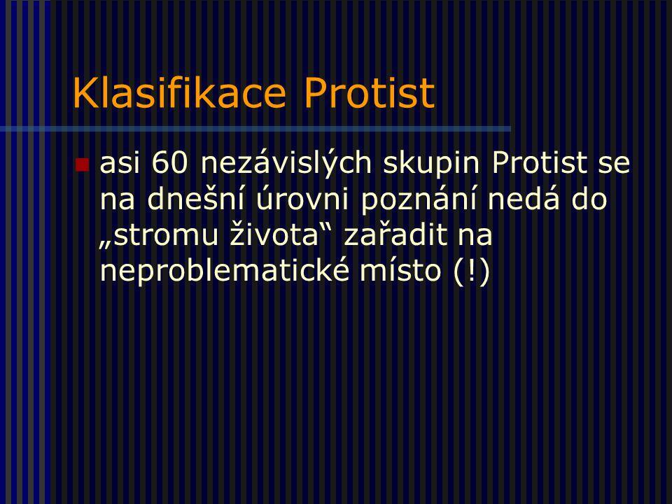 """Klasifikace Protist asi 60 nezávislých skupin Protist se na dnešní úrovni poznání nedá do """"stromu života zařadit na neproblematické místo (!)"""