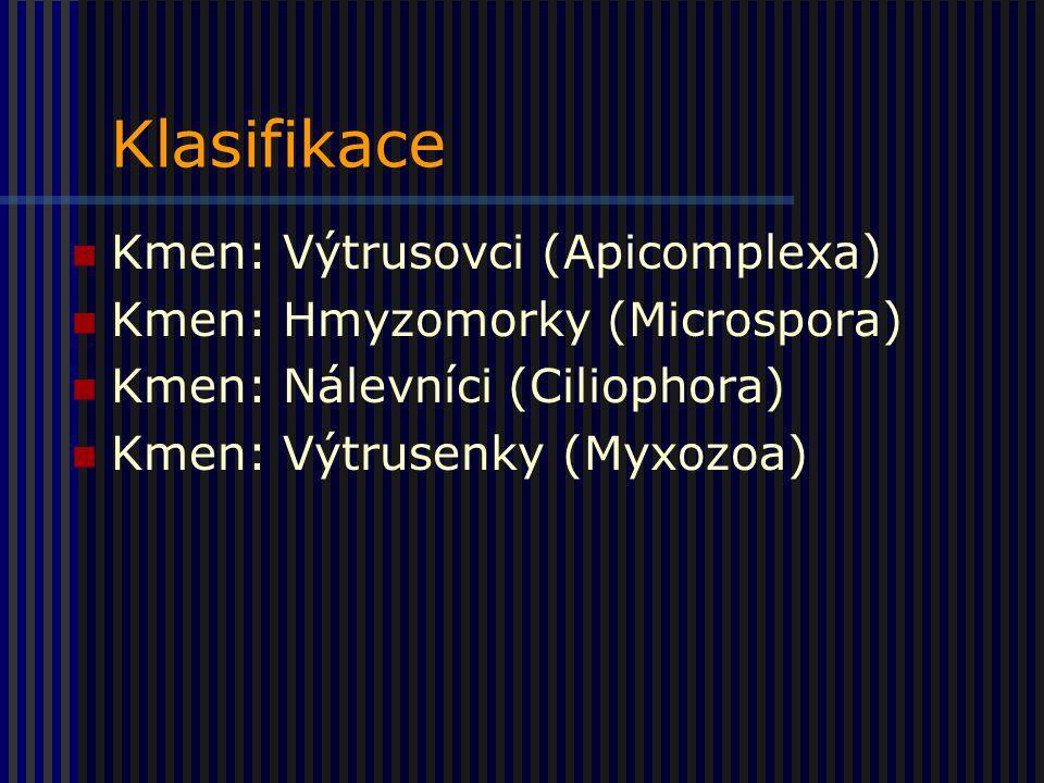 Klasifikace Kmen: Výtrusovci (Apicomplexa)