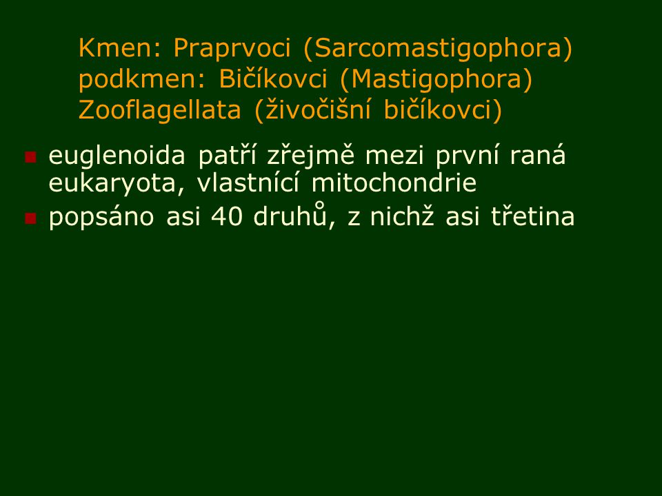 Kmen: Praprvoci (Sarcomastigophora) podkmen: Bičíkovci (Mastigophora) Zooflagellata (živočišní bičíkovci)