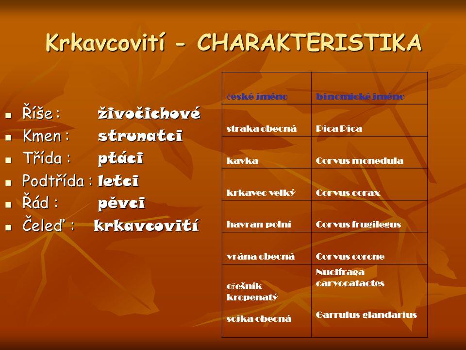 Krkavcovití - CHARAKTERISTIKA