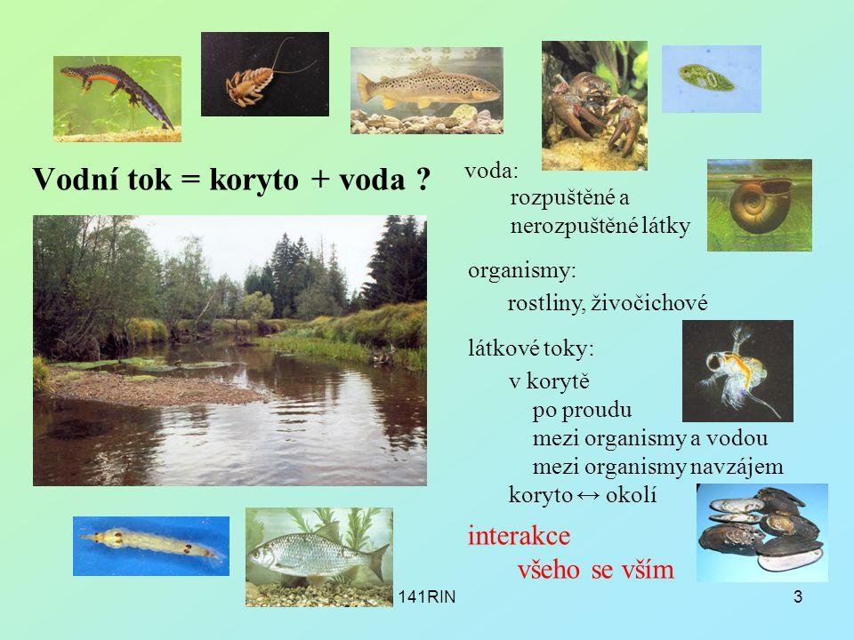 Vodní tok = koryto + voda