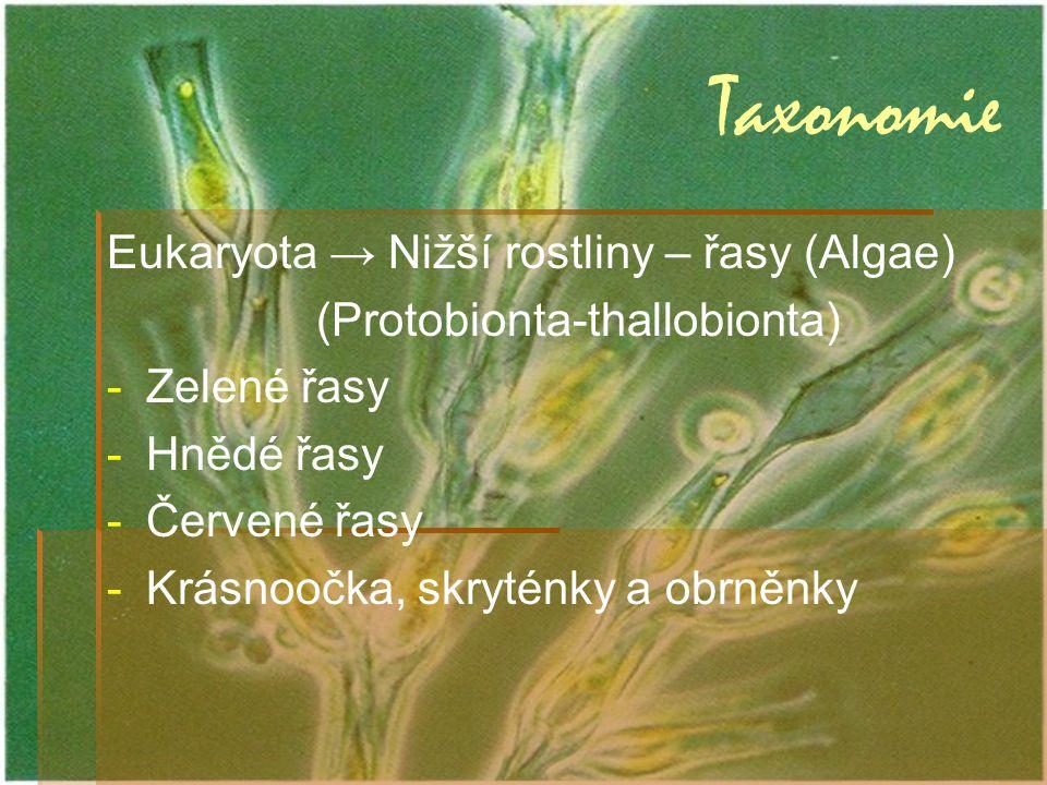 Taxonomie Eukaryota → Nižší rostliny – řasy (Algae)