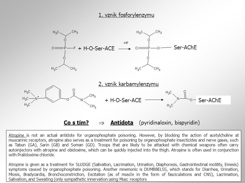 1. vznik fosforylenzymu -HF. + H-O-Ser-ACE. Ser-AChE. 2. vznik karbamylenzymu. + H-O-Ser-ACE. Ser-AChE.