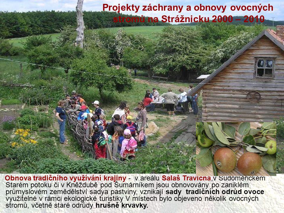 Projekty záchrany a obnovy ovocných stromů na Strážnicku 2000 – 2010