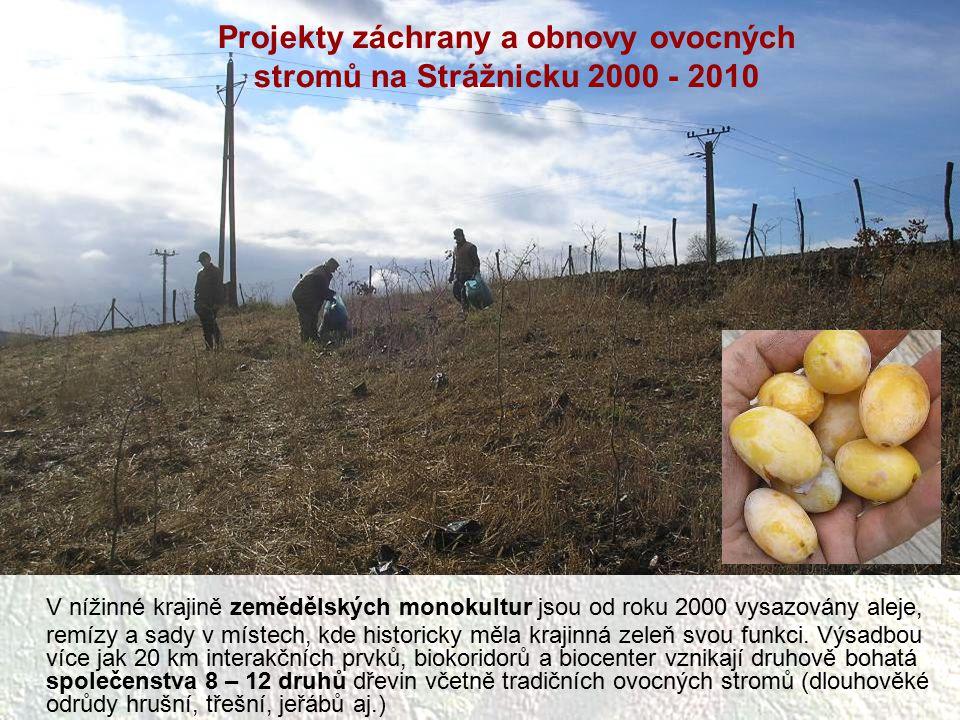 Projekty záchrany a obnovy ovocných stromů na Strážnicku 2000 - 2010