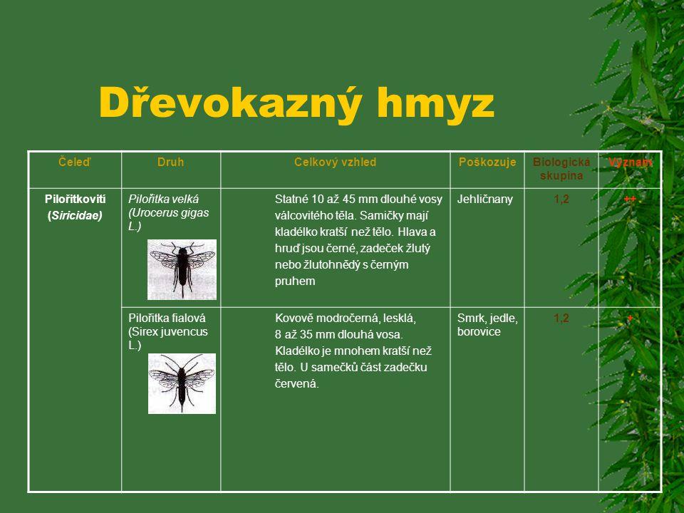 Dřevokazný hmyz Čeleď Druh Celkový vzhled Poškozuje Biologická skupina