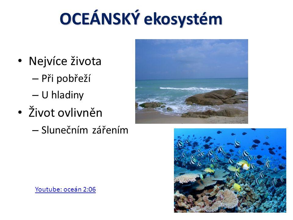 OCEÁNSKÝ ekosystém Nejvíce života Život ovlivněn Při pobřeží U hladiny