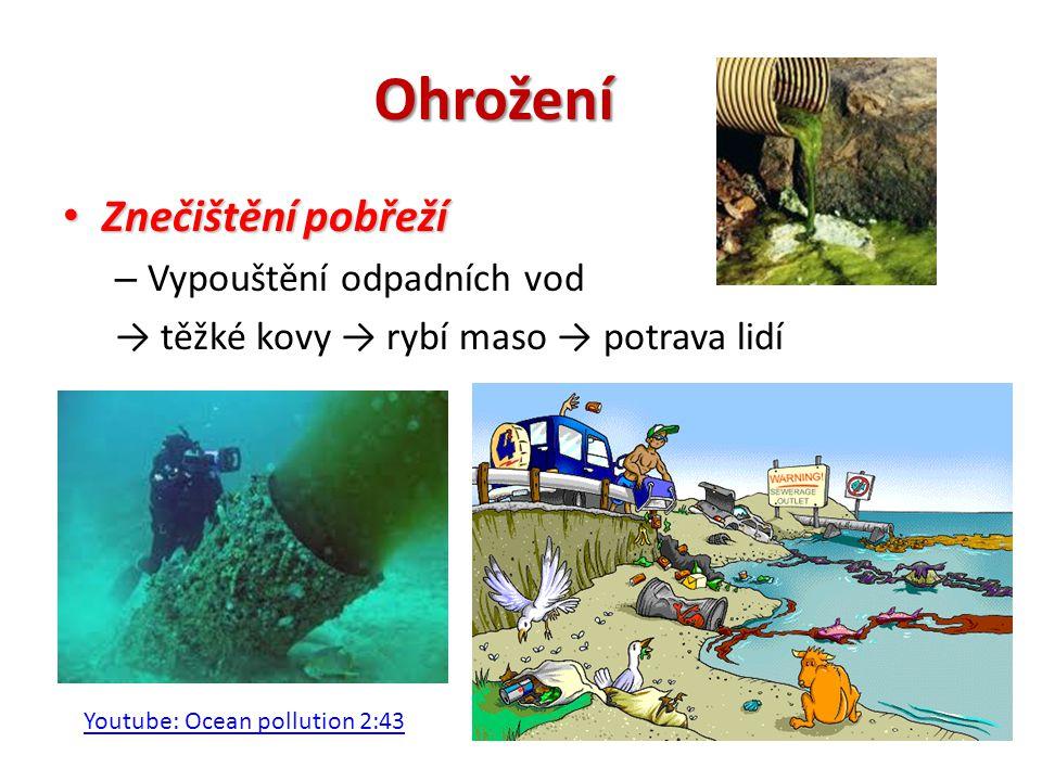 Ohrožení Znečištění pobřeží Vypouštění odpadních vod