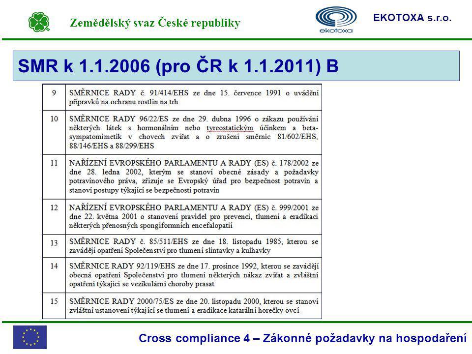 SMR k 1.1.2006 (pro ČR k 1.1.2011) B