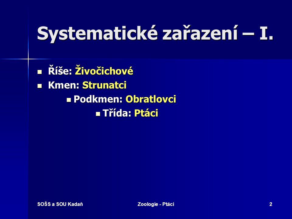 Systematické zařazení – I.
