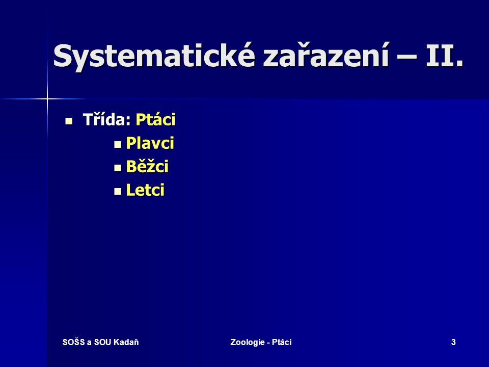 Systematické zařazení – II.