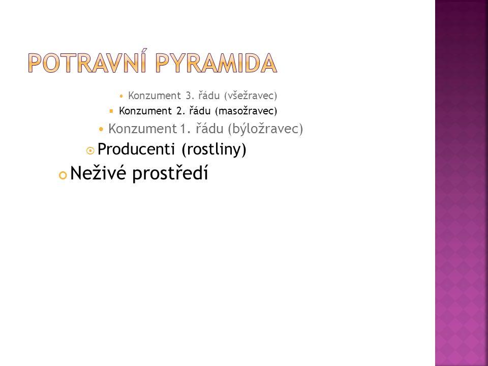 Potravní pyramida Neživé prostředí Producenti (rostliny)