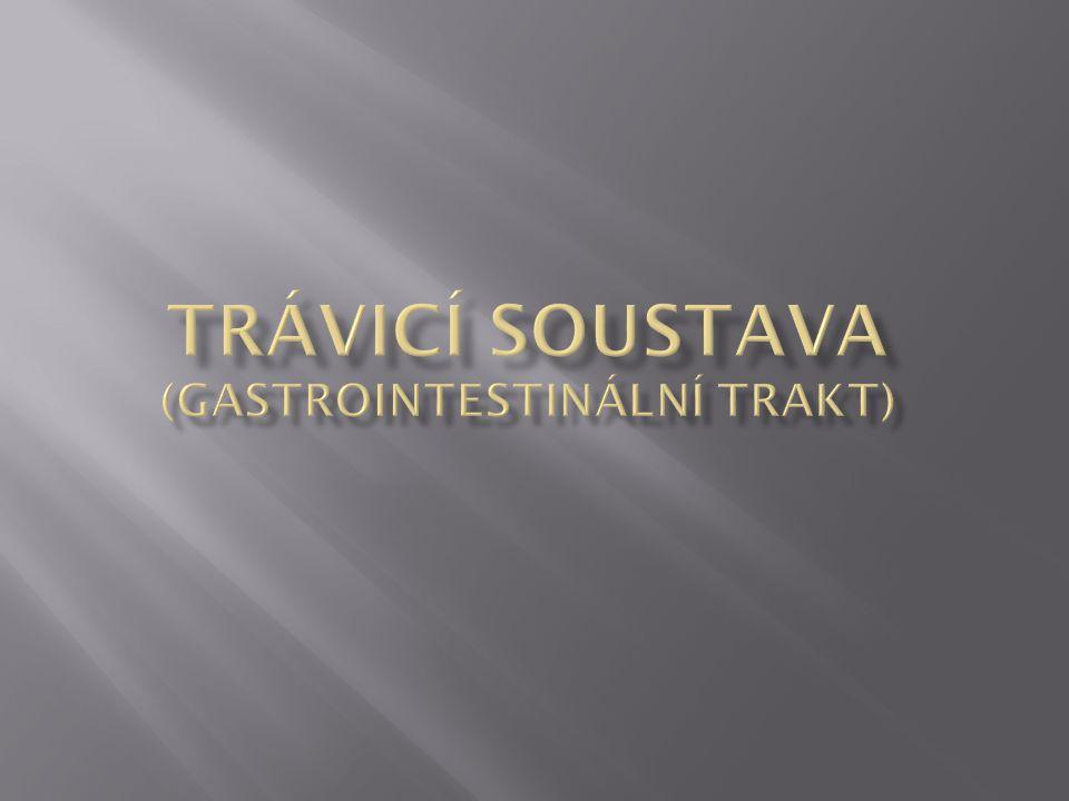Trávicí soustava (gastrointestinální trakt)