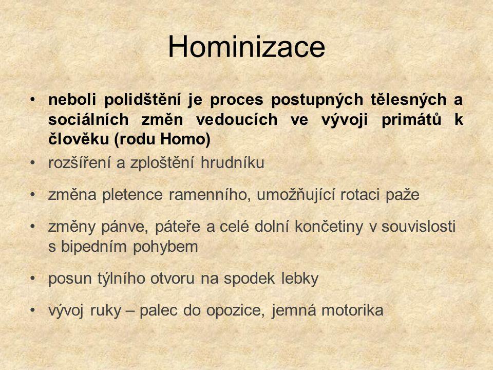 Hominizace neboli polidštění je proces postupných tělesných a sociálních změn vedoucích ve vývoji primátů k člověku (rodu Homo)