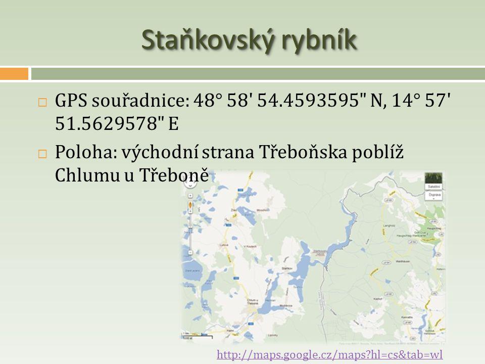 Staňkovský rybník GPS souřadnice: 48° 58 54.4593595 N, 14° 57 51.5629578 E. Poloha: východní strana Třeboňska poblíž Chlumu u Třeboně.