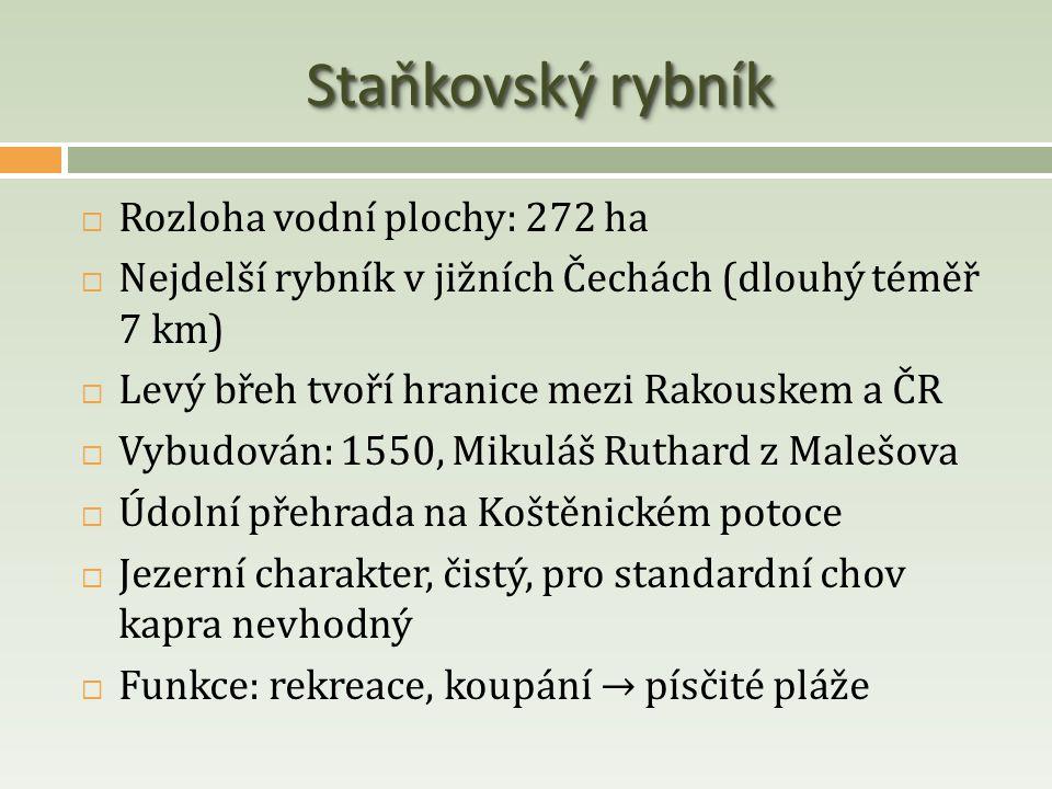 Staňkovský rybník Rozloha vodní plochy: 272 ha
