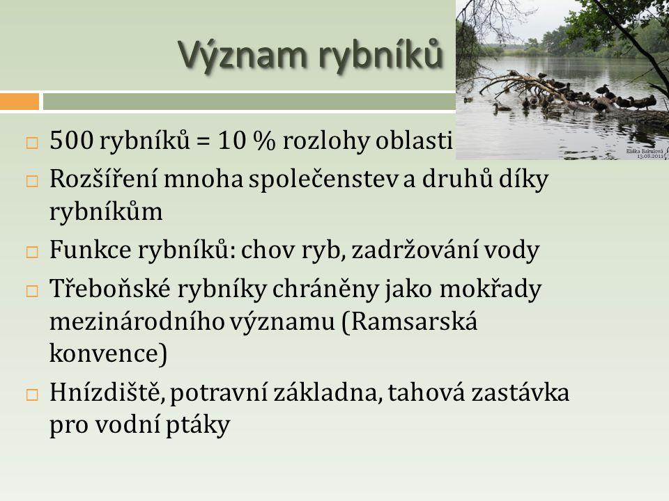 Význam rybníků 500 rybníků = 10 % rozlohy oblasti