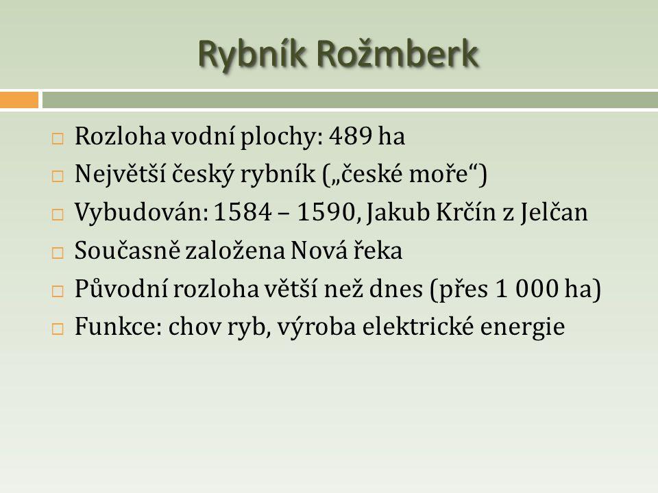 Rybník Rožmberk Rozloha vodní plochy: 489 ha