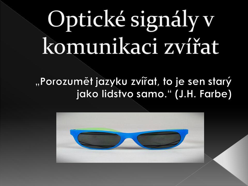 Optické signály v komunikaci zvířat