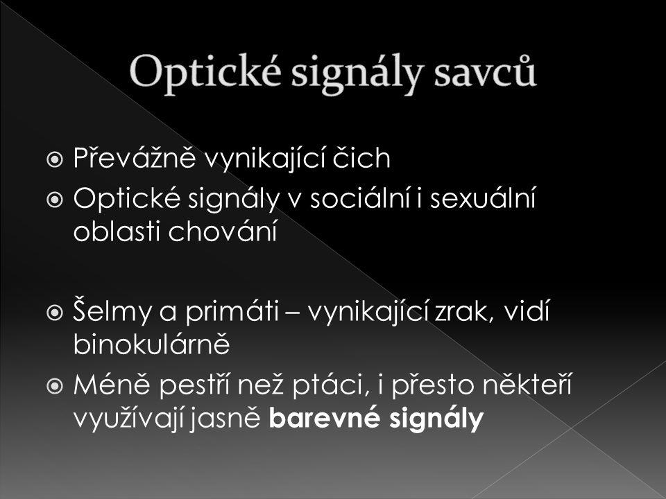 Optické signály savců Převážně vynikající čich