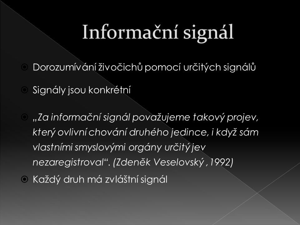 Informační signál Dorozumívání živočichů pomocí určitých signálů