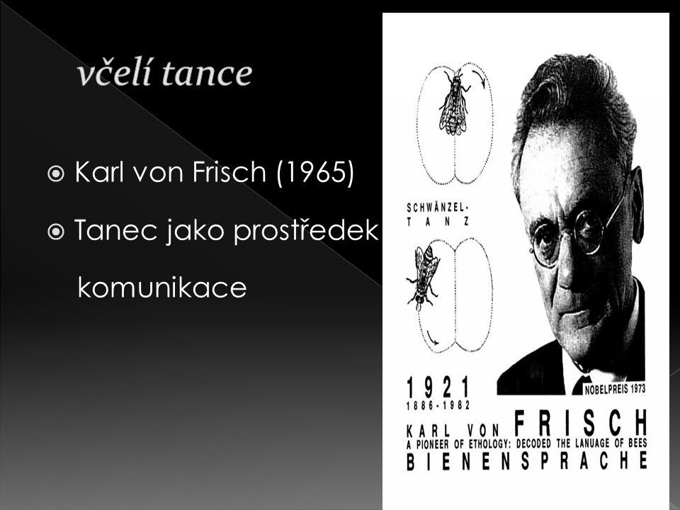 včelí tance Karl von Frisch (1965) Tanec jako prostředek komunikace