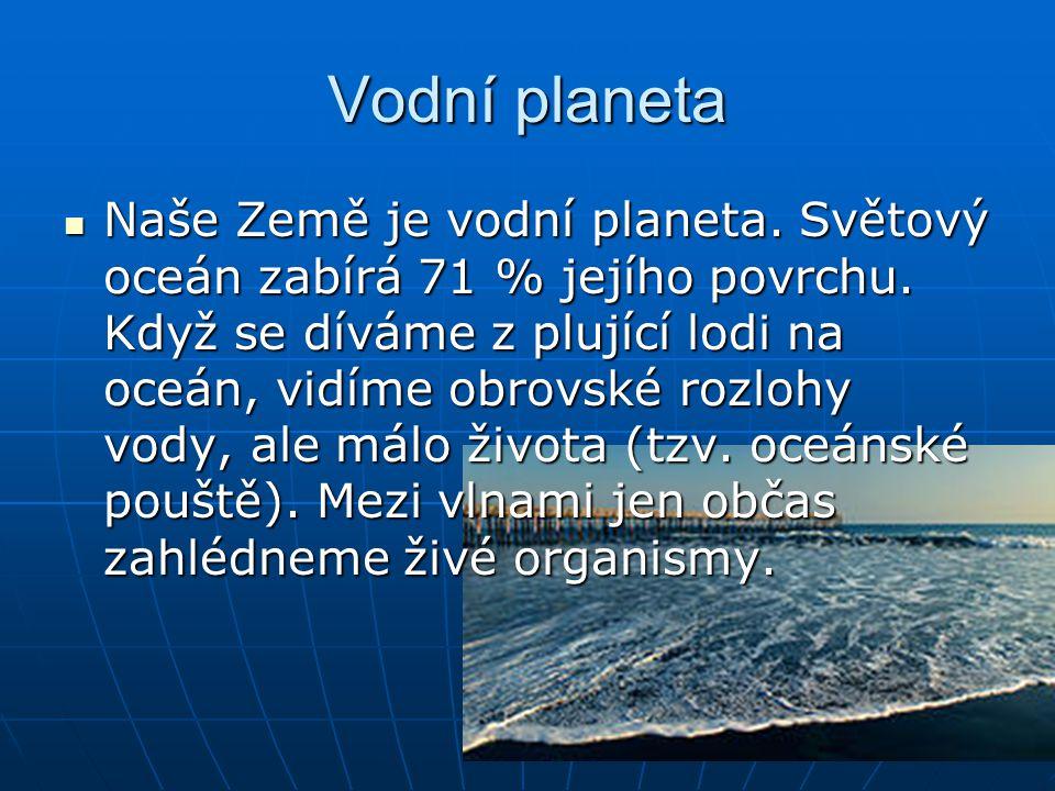 Vodní planeta