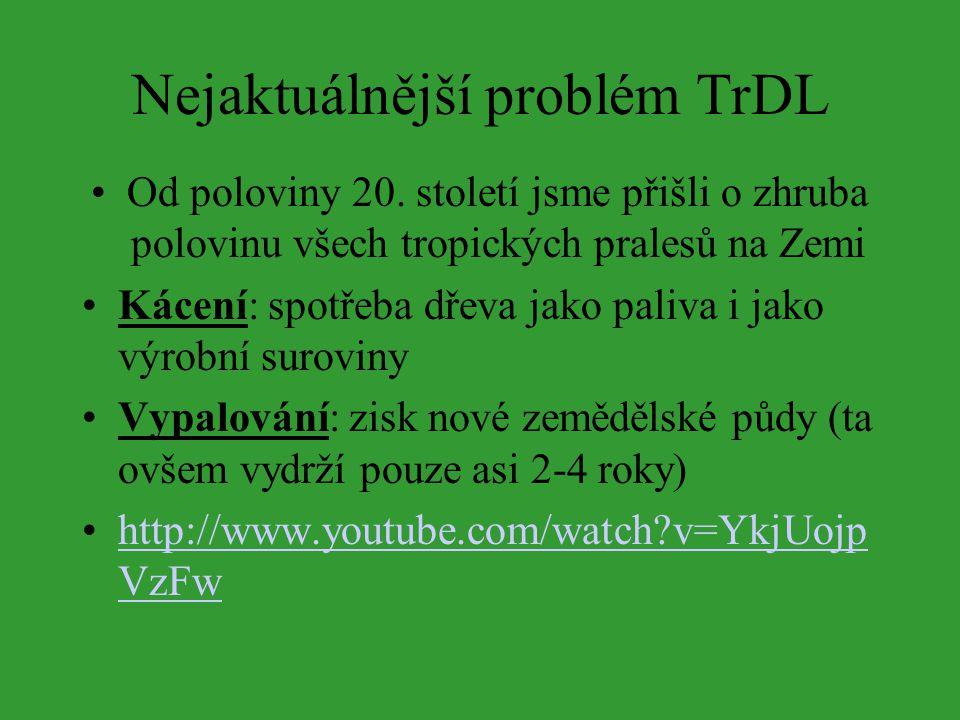 Nejaktuálnější problém TrDL