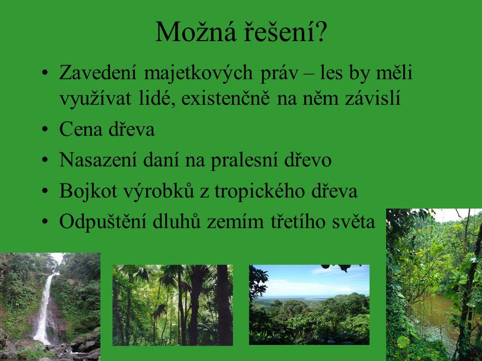 Možná řešení Zavedení majetkových práv – les by měli využívat lidé, existenčně na něm závislí. Cena dřeva.