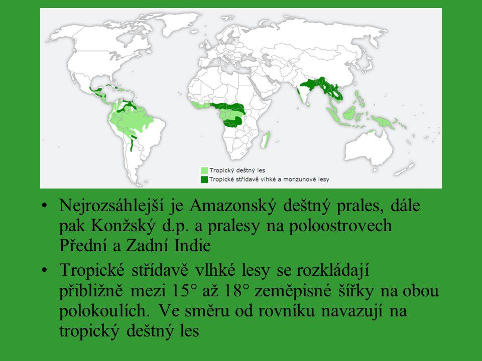 Nejrozsáhlejší je Amazonský deštný prales, dále pak Konžský d. p