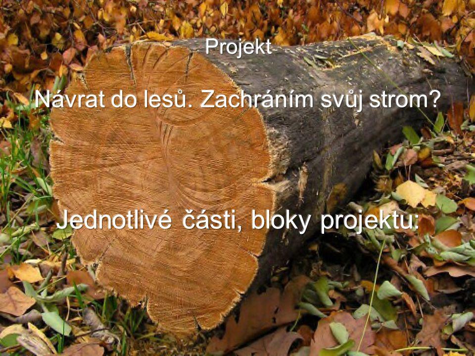 Projekt Návrat do lesů. Zachráním svůj strom