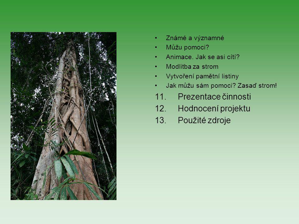 11. Prezentace činnosti 12. Hodnocení projektu 13. Použité zdroje