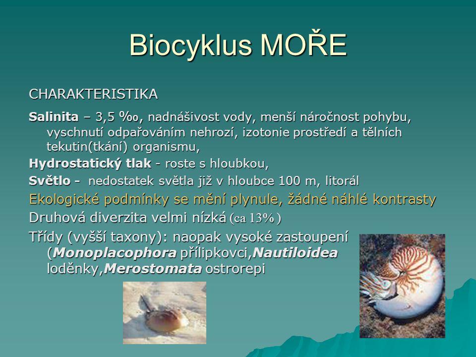 Biocyklus MOŘE CHARAKTERISTIKA