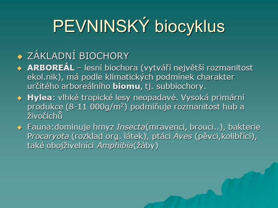PEVNINSKÝ biocyklus ZÁKLADNÍ BIOCHORY