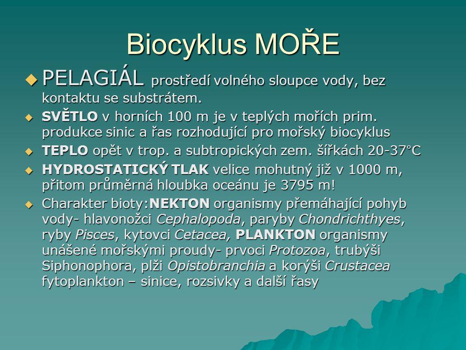 Biocyklus MOŘE PELAGIÁL prostředí volného sloupce vody, bez kontaktu se substrátem.
